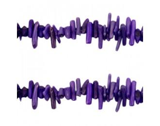 Bambou de mer violet